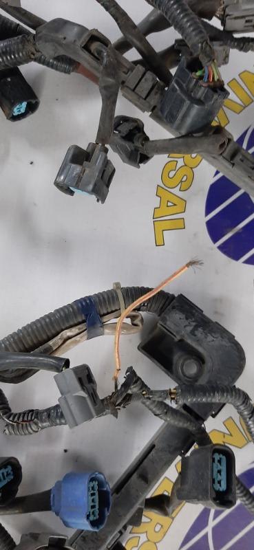 Проводка ДВС Stream 2001 RN3 K20A