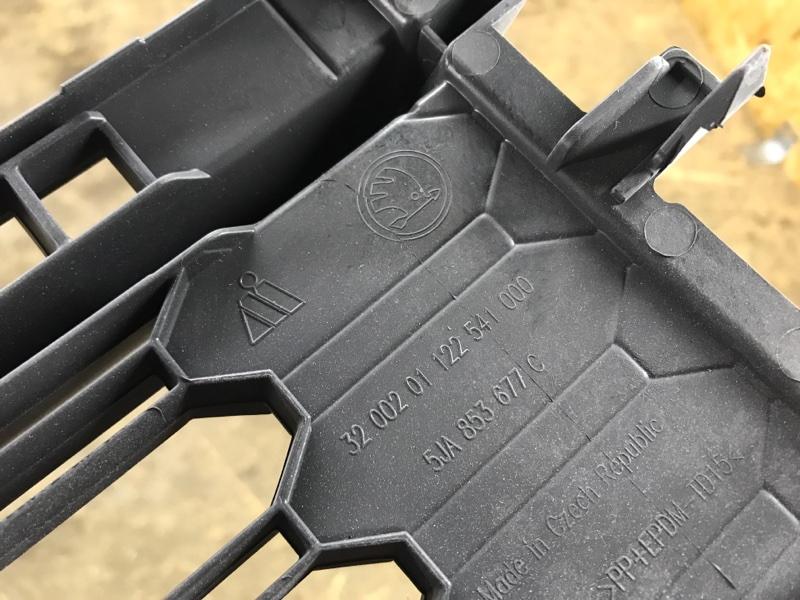 Решетка в бампер передняя Rapid 2017