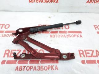 Запчасть петля крышки багажника правая Mazda Mazda3 2009
