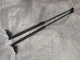 Амортизатор крышки багажника NISSAN QASHQAI (J10) 2006-2014
