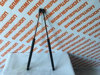Амортизатор багажника задний FORD FOCUS 2 (2008-2011) 2009