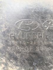 Защита двигателя Hyundai Tucson JM 2.0