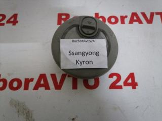 Запчасть плафон салона Ssangyong Kyron 2008